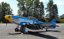 Spitfire americane di bellezza Immagini Stock Libere da Diritti