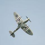 Spitfire en vol Image stock