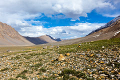 Spiti Valley Himalayas Stock Image