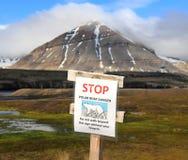 Spitsbergen: Advertencia del oso Imágenes de archivo libres de regalías