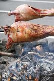 Spitting image. Shot of animals being roasted on a spit over an open fire, viking style Royalty Free Stock Photos