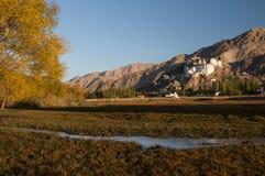 Висок Spituk Budhist, Ladakh, Индия Стоковое Изображение