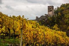 Spitz castle with autumn vineyard in Wachau valley, Austria. Ruins of Spitz castle with autumn vineyard in Wachau valley, Austria royalty free stock photos