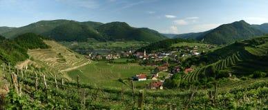 Spitz an der Donau, Wachau, Austria. Spitz town in valley with vineyards at Danube river in Wachau - Austria royalty free stock photos