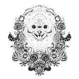 Spitz grafiki pies, abstrakcjonistyczna wektorowa ilustracja Obraz Royalty Free