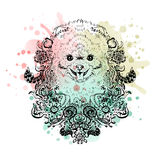 Spitz grafiki pies, abstrakcjonistyczna wektorowa ilustracja royalty ilustracja