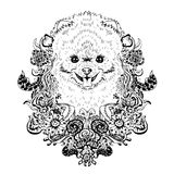 Spitz graphic dog, abstract vector illustration Royalty Free Stock Image