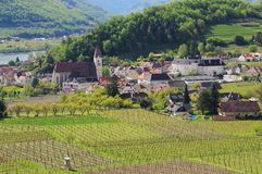 Spitz i Wachau arkivbilder