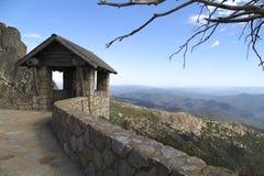Spitze des Berg-Büffels Stockbilder