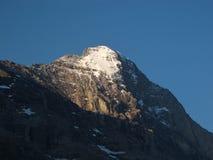 Spitze des Eiger Stockbilder