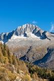 Spitze des Sorgfalt-Altes - Adamello Trento Italien Lizenzfreie Stockfotos