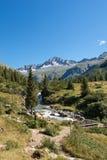 Spitze des Sorgfalt-Altes - Adamello Trento Italien Lizenzfreies Stockfoto