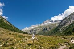 Spitze des Sorgfalt-Altes - Adamello Trento Italien Lizenzfreie Stockbilder