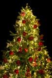 Spitze des Weihnachtsbaums Lizenzfreie Stockbilder