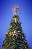 Spitze des Weihnachtsbaums mit einem gefilterten Himmel im Hintergrund Stockfoto