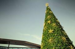 Spitze des Weihnachtsbaums mit einem gefilterten Himmel im Hintergrund Stockbilder