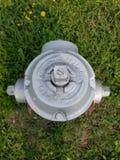 Spitze eines Hydranten stockfoto