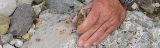 Spitze hinunter die Ansicht der Mannhand Mineralien erforschend Geologische Besetzung in der Natur stockfotos