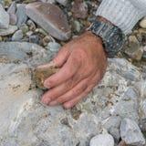 Spitze hinunter die Ansicht der Mannhand Mineralien erforschend Geologische Besetzung in der Natur lizenzfreies stockfoto