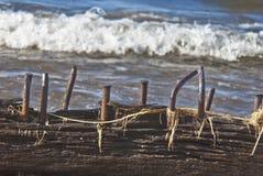 Spitzen, die aus Schiffbruchstrahl heraus haften Stockfotos