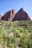 Spitzen im Zion Schlucht-Nationalpark, Utah lizenzfreie stockfotografie