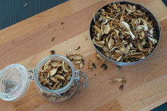 Spitzen- oder flache Ansicht von geschnittenen, gehackten und getrockneten vairous Pilzen Lizenzfreie Stockfotografie