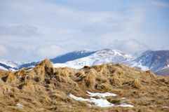 Spitzen von Azuga-Bergen, Rumänien Stockfotografie
