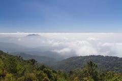 Spitzen wurden in ein Meer des Nebels bei Thailand eingehüllt stockfotos