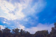 Spitzenlinie der grünen Bäume über Himmel stockbild
