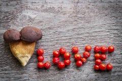 Spitzenretusche-, getonte und sauberehaut Zwei Kiefer Boletepilze zusammen angebaut, mit Liebesaufschrift Stockfoto
