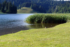 Spitzingsee (See in Alpes) lizenzfreie stockfotos