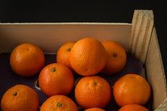 Spjällåda av Clementine Oranges, från sida Arkivbild