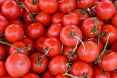 Spjällåda av tomater arkivbild