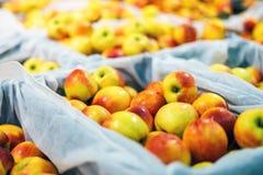 Spjällådor av äpplen på marknaden Royaltyfri Foto