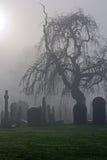 Spöklik gammal kyrkogård på en dimmig vinterdag Royaltyfria Bilder