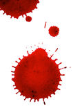 Splash. Red spots on white background Royalty Free Stock Photos