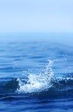 Splash. Water splash in blue color Royalty Free Stock Image
