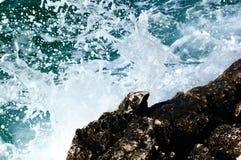 Splash. Wave breaking on rocks royalty free stock image