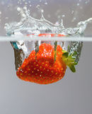 Splash royalty free stock photos