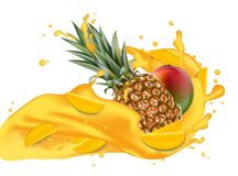 Splash of ananas juice. Mango and pineapple. 3d realistic vector. EPS 10. Packaging template. Brand advertising. Mango slices flowing in the splashing Stock Photos