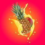 Splash of ananas juice. Mango and pineapple. 3d realistic vector. EPS 10. Packaging template. Mango leaves. Colourful background. Brand advertising Royalty Free Stock Images