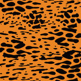 Splash background pattern Stock Image