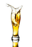 Splash beer in glass Royalty Free Stock Photos