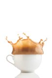 Splash of coffee in white cup Royalty Free Stock Photo