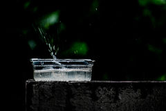 Splash. A cup of water placed for birds in summer but there was a sudden rain Royalty Free Stock Photography