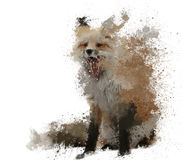 Splash fox with paint splatters Royalty Free Stock Images