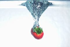 Splash fruits. Down fruits in to the water Stock Image