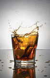 Splash in glass of scotch whiskey with ice Stock Images