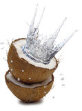 Splash of juice in coconut Stock Images