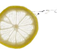 A Splash of Lemon Royalty Free Stock Photo